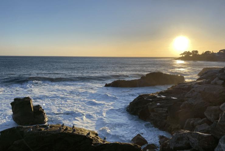 Meditation & Healing Retreat, Santa Cruz